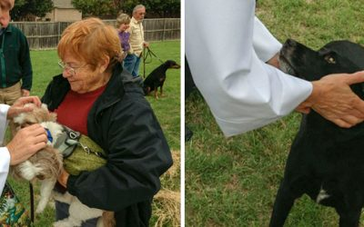 St. Francis Blessing of the Animals Service