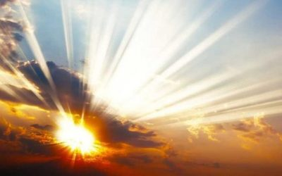 Stewardship Update: Gratitude and Hope